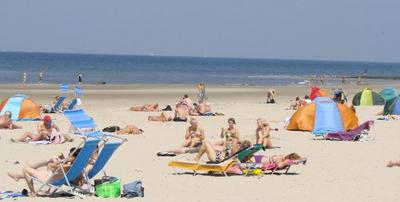 Entscheiden Sie sich für Urlaub mit Hund in Holland